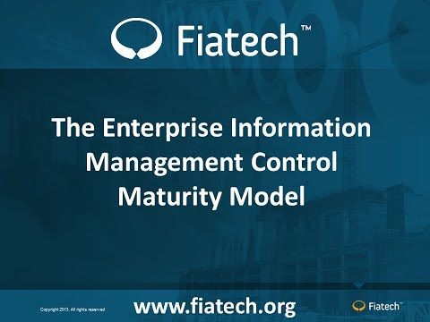The Enterprise Information Management Control Maturity Model