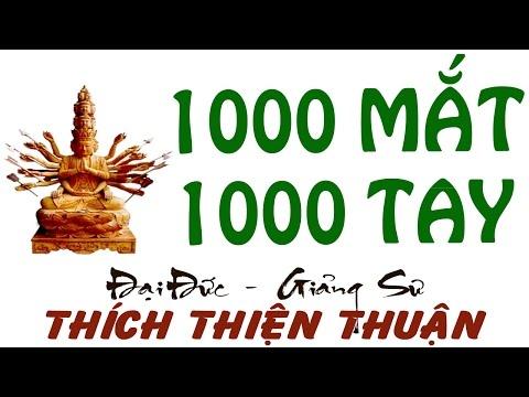 Thich Thien Thuan 2015 - Nghìn Mắt Nghìn Tay (Thuyet Phap Chùa Từ Quang)