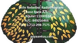Seife-Nebelbal Radio: News & Interview with Sidama Nationalist Bekele Wayu