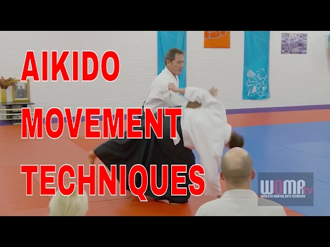 AIKIDO Movement Techniques Christian Tissier pt7