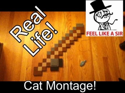 Real life minecraft fishing rod cat toy with working for Real life fishing games