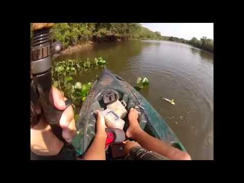 Pescaiaque Goiás - Pescaria de Tucunaré com iscas artificiais
