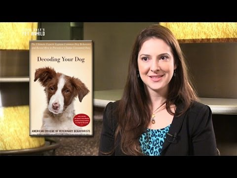 Thumbnail image for 'Decoding Your Dog: American College of Veterinary Behaviorists'