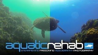 GOPRO PROTUNE GRADING TUTORIAL Underwater