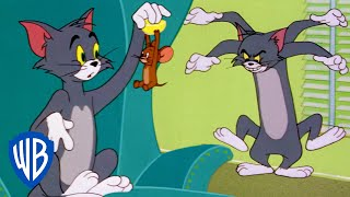 Tom a Jerry - Zábava doma