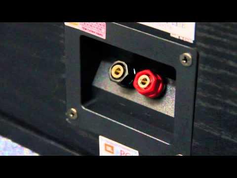 Loa Karaoke JBL R10 II