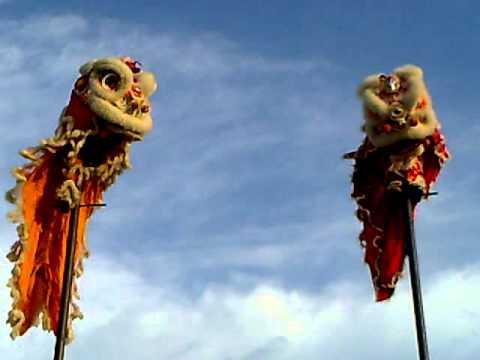 KỶ LỤC GUINNESS VIỆT NAM: (Đôi Nam - Nữ Duy Nhất Việt Nam Múa Lân Trên Cột, Chiều Cao 7m)