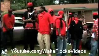 ViceLords And Bloods Video