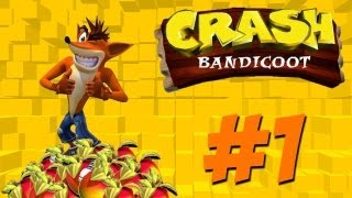 Crash Bandicoot: 1 - The Beginning!