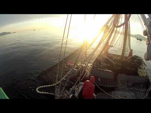 Alaska Commercial Salmon Fishing Summer 2012