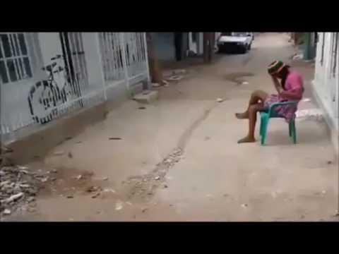 Videos chistosos cortos