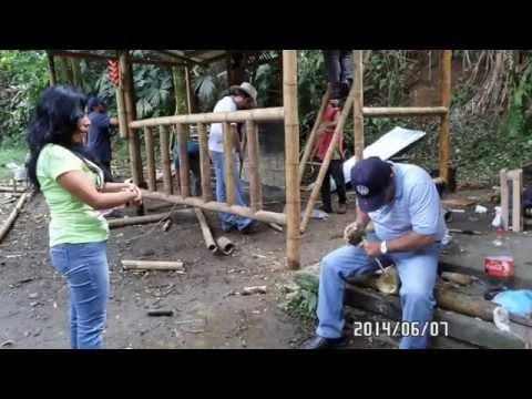 CURSO TALLERES CON GUADUA Y BAMBU COLOMBIA