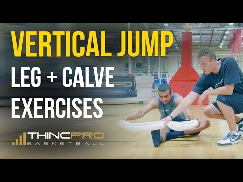 INCREASE VERTICAL JUMP TODAY with These 2 Pro Leg Exercises! (Vertical Jump Leg Workout)