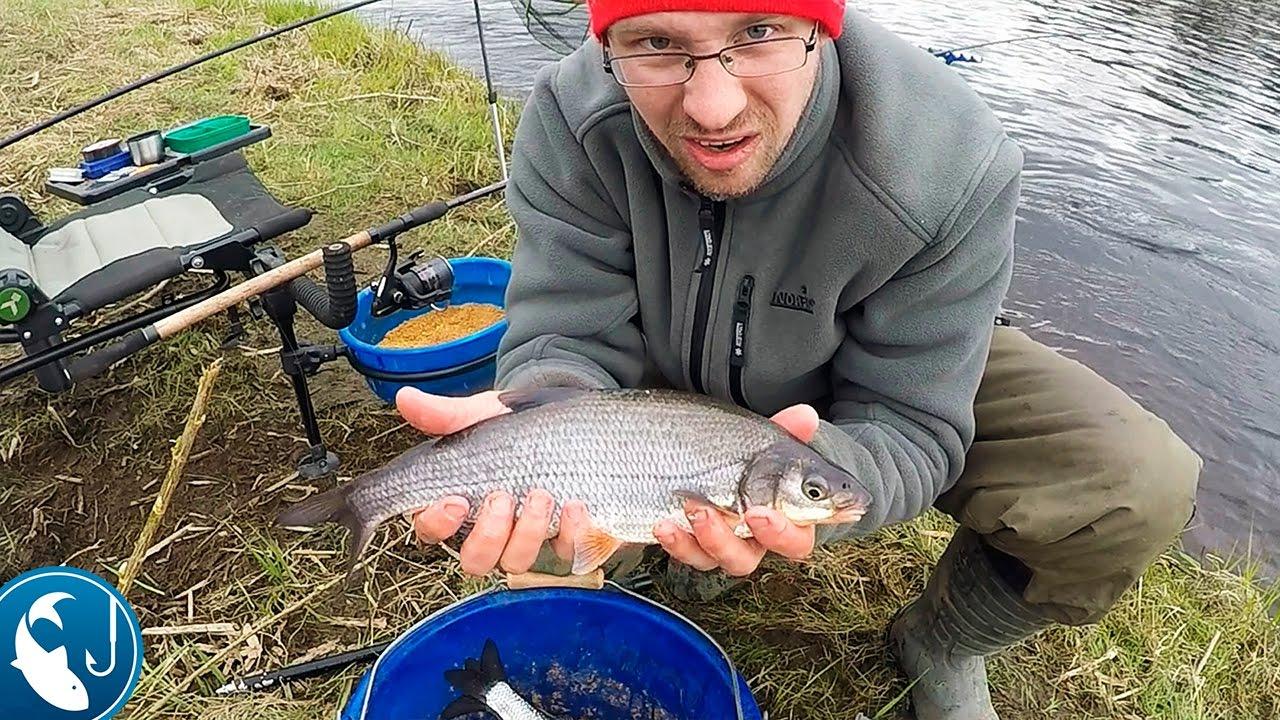 ловля рыбца на дону приманка