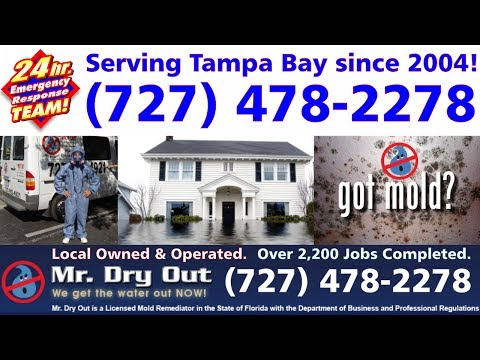 Water Damage Clearwater - (727) 478-2278 - Leak Detection St Petersburg FL