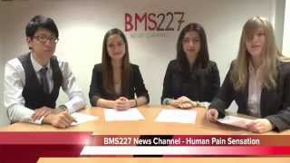 The 'BMS227 news team' provide a fun presentation about human pain sensation.