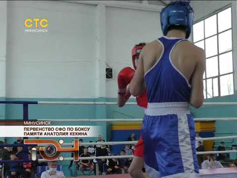 Первенство СФО по боксу памяти Анатолия Кекина