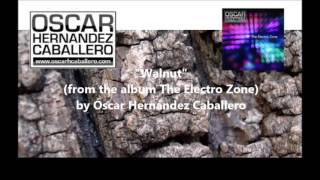 Walnut - The Electro Zone release 2013