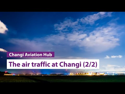 """The Air Traffic"" at Singapore Changi Airport by Milton Tan"