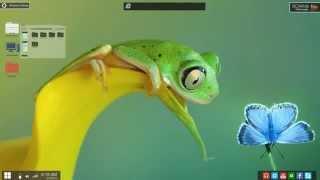 Фантастический миниатюрный мир лягушек. лягушки, макро, мир.