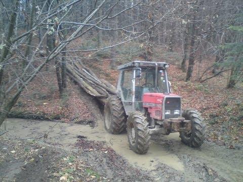 zrywka drewna (Leśnictwo Magura)