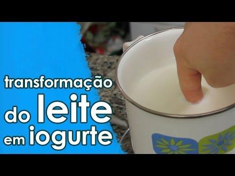 A transformação do leite em iogurte (experiência + receita)