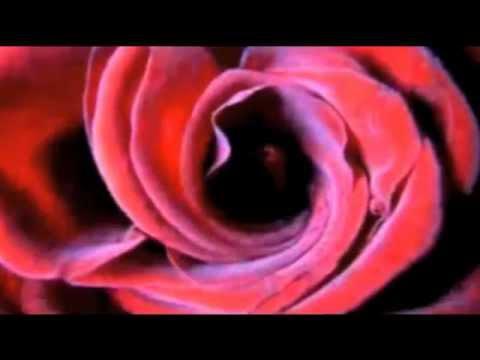 Lana Del Rey - Video Games (Solarstone Subterranean Mix)