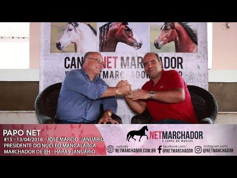 #15 - PAPO NET - JOSÉ MÁRCIO - PRESIDENTE DO NÚCLEO MANGALARGA MARCHADOR DE BH - HARAS JANUÁRIO