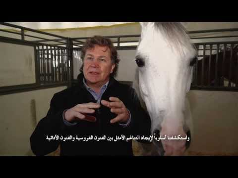 Cavalia at Qasr al Hosn: Normand Latourelle and his inspiration. - كفاليا في قصر الحصن