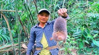 Dúi Rừng Ăn Với Cơm Lam Tại Rừng Già   Hương Sơn Green