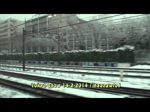 myanmar8888(Tokyo snow 14-2-2014)