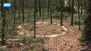 Landart Diessen - 698