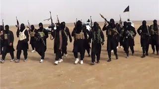 خبر اليوم : داعش تروض دئابها المنفردة لاستهداف المغرب |