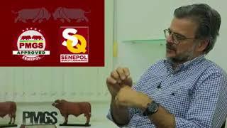 Senepol #ADICA – Ep. 02