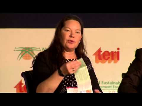 Annika Markovic, Sweden: We can and shall do more with less - DSDS 2013