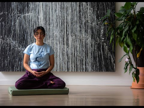 Introduction to Zen Meditation: The Still Point