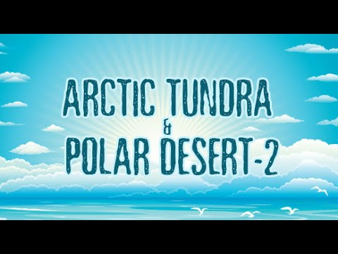 Fun N Learn - Biomes - Arctic Tundra N Polar Desert - 2