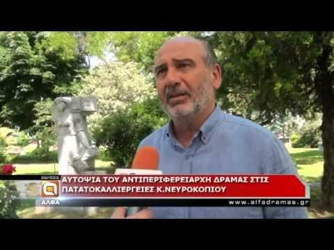 Σημαντικές καταστροφές στην καλλιέργεια πατάτας στο Νευροκόπι