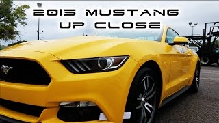 2015 Mustang BEST UP CLOSE WALKAROUND 2.3L TurboCharged