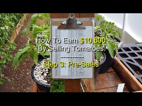 EARN $10,600 SELLING TOMATOES - Step 3: Pre-Sales