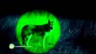 Nueva Linterna Laser Genetics