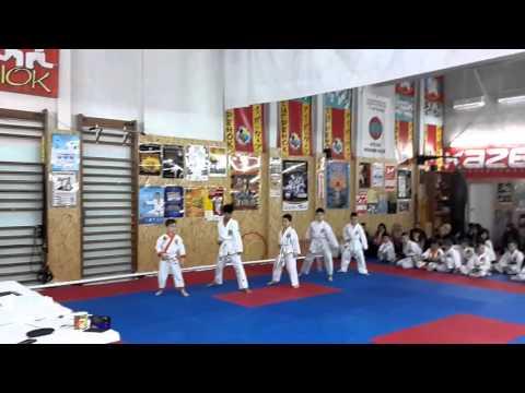 Аттестационный экзамен по каратэ в клубе Тигренок 24.04.2016 г. ч.1