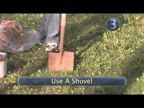 How To Use Garden Tools Including Shears and Rakes