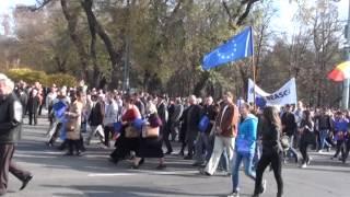 Povestea tricolorului la miting #PMAN #Chișinău