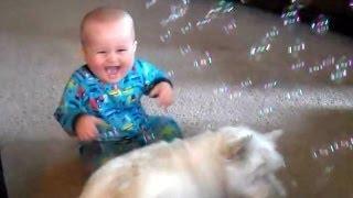 Niños, mascotas y pompas de jabón