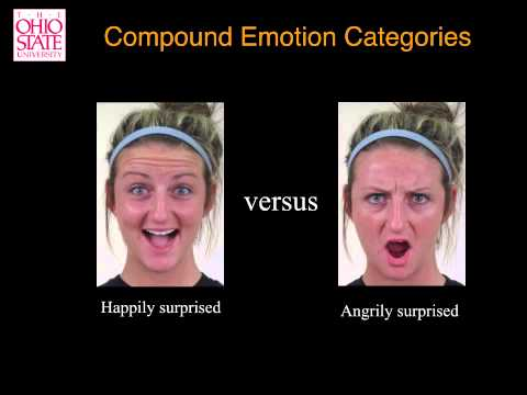 Compound Facial Expressions of Emotion