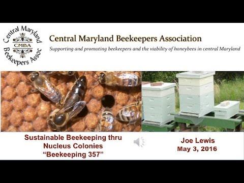 Sustainable Beekeeping thru Nucleus Colonies