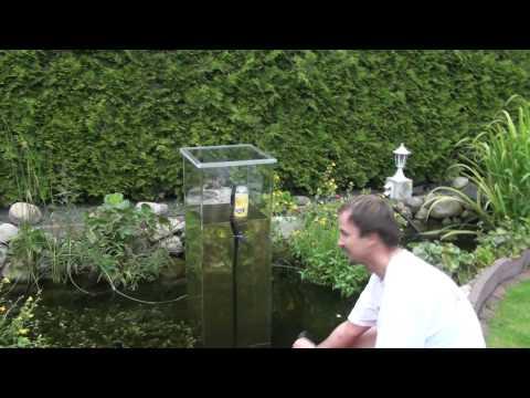 Teich aussichtsturm gruppe oo aquarium videos oo for Koi im gartenteich