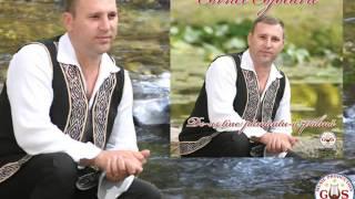 Cornel Cojocaru- Multi Nu M-au Crezut In Stare [Official