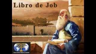 Armando Alducin Job 3 La Integridad De Job